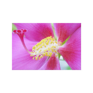 Impresso® Hibiscus by MB7Art Gallery Wrapped Canvas