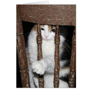 Imprisoned Card
