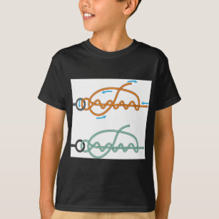 improved_clinch_knot_diagram_two_color_version_t_shirt r5cd86cfafd044885b20852fd1a88f9e8_65ytt_307 bait loop t shirts & shirt designs zazzle