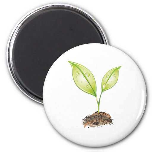 Impulse sprout refrigerator magnets