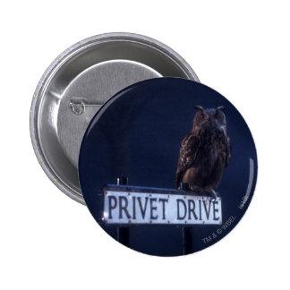 Impulsión de Privet Pin Redondo De 2 Pulgadas