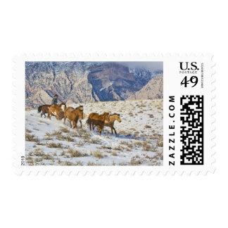 Impulsión del caballo a través de la nieve sello postal