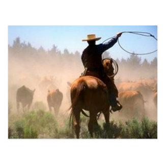 Impulsión del ganado postales