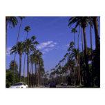 Impulsión residencial del rodeo, Beverly Hills, Ca Tarjeta Postal