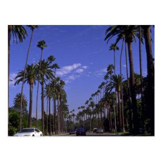 Impulsión residencial del rodeo, Beverly Hills, Tarjetas Postales