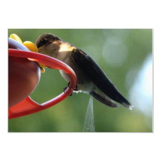 """¡Impulso del colibrí! Invitación 5"""" X 7"""""""