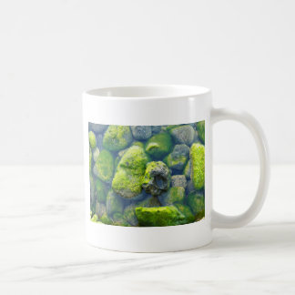 Imu Rocks Coffee Mug