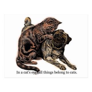 In a Cat's Eye Postcard