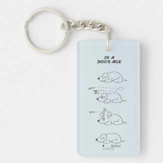 In a Dog's Age Acrylic Key Chains