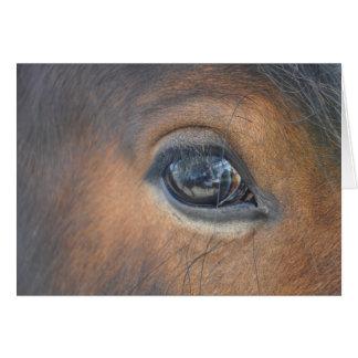 in a horses eye greeting card