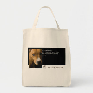 In a Perfect World Tote