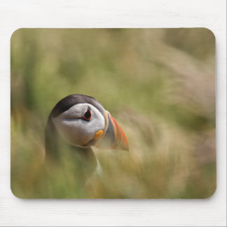 In a Sea of Green Puffin Mousepad