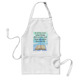 In all thy ways adult apron