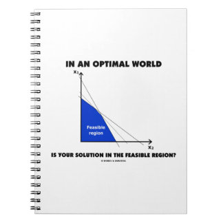 In An Optimal World Is Your Solution Feasible? Notebook