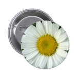 In Bloom Pinback Buttons