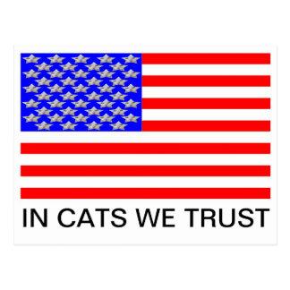 In Cats We Trust Postcard