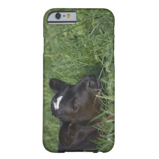 In Chinese zodiac, 2009 is year of ox. Barely There iPhone 6 Case