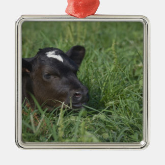In Chinese zodiac, 2009 is year of ox. Metal Ornament