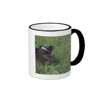 In Chinese zodiac, 2009 is year of ox. Coffee Mug