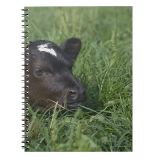 In Chinese zodiac, 2009 is year of ox. Spiral Notebook