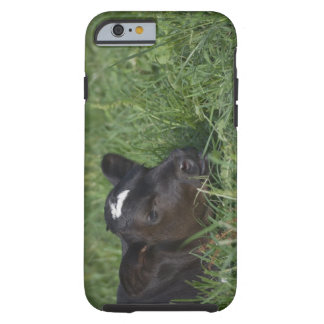 In Chinese zodiac, 2009 is year of ox. Tough iPhone 6 Case
