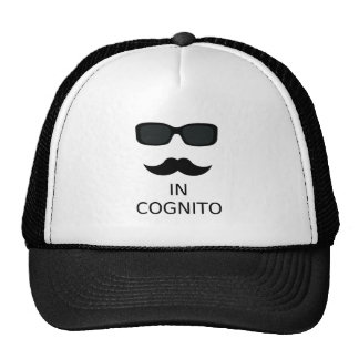 In Cognito Mesh Hats