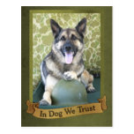 In Dog We Trust Postcard