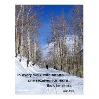 In every walk with nature...by John Muir Postcard