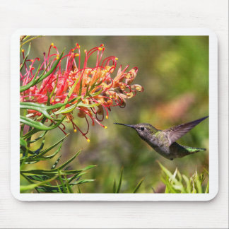 In flight Hummingbird feeding Mouse Pad