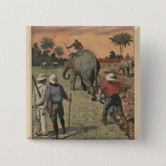 In French Congo, elephant trained to ploughing Button