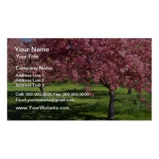 In full bloom, Niagara Falls flowers Business Cards