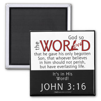 In His Word-John 3:16 Scripture Magnet