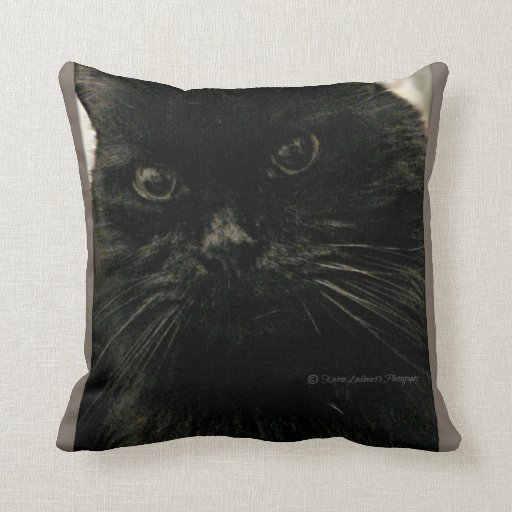 In Honor of Silver Throw Pillow