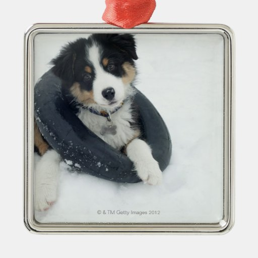 in inner tube in the snow square metal christmas ornament