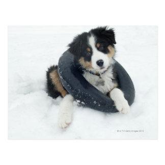 in inner tube in the snow postcard