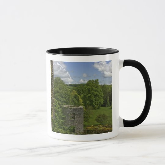 In Ireland, at Blarney Castle a stone tower in Mug