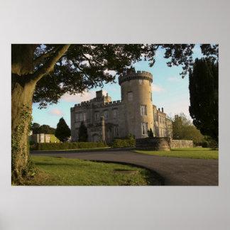 In Ireland, the Dromoland Castle side entrance Print