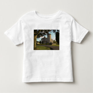 In Ireland, the Dromoland Castle side entrance Toddler T-shirt