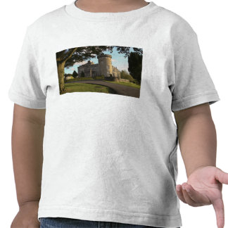 In Ireland, the Dromoland Castle side entrance Tee Shirts