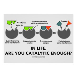 In Life, Are You Catalytic Enough? Enzyme Humor Posters