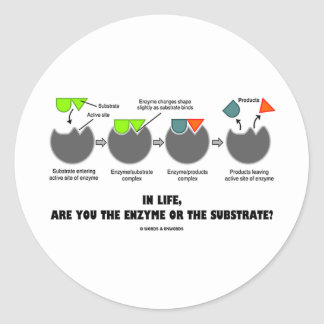 In Life, Are You The Enzyme Or The Substrate? Classic Round Sticker