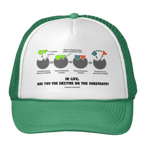 In Life, Are You The Enzyme Or The Substrate? Hats