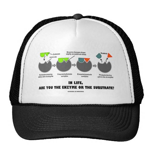 In Life, Are You The Enzyme Or The Substrate? Trucker Hat