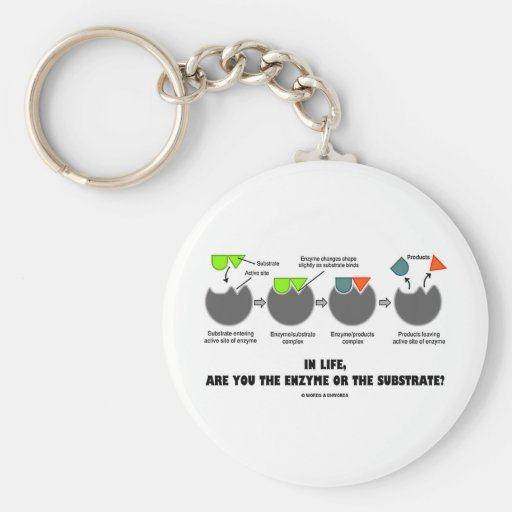 In Life, Are You The Enzyme Or The Substrate? Key Chain