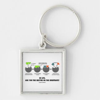 In Life, Are You The Enzyme Or The Substrate? Keychain