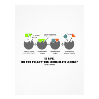 """In Life, Do You Follow The Induced-Fit Model? 8.5"""" X 11"""" Flyer"""