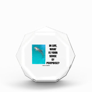 In Life, What Is Your Sense Of Porpoise? (Purpose) Award