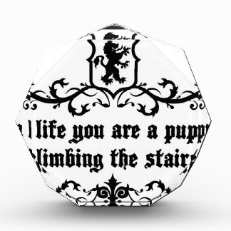 In Life You Are A Puppy Climbing The Stairs Acrylic Award