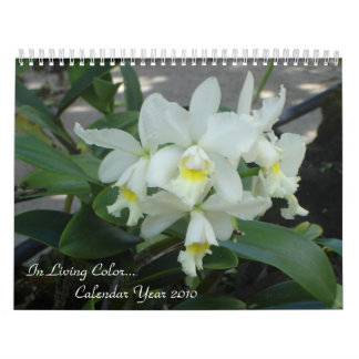 In Living Color-Tropical  Flowers Calendar