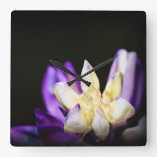 In Love With Lupine Square Wall Clocks